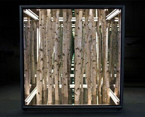 Anthony James, Birch Box. Photo Credit: Brand New Gallery